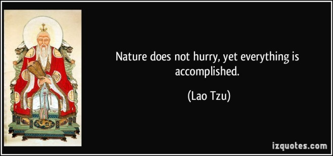 quote-nature-does-not-hurry-yet-everything-is-accomplished-lao-tzu-188495
